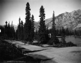 Cave and Basin Drive, Banff, Alta.