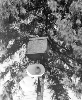 [Haida burial chest in tree at Thunderbird Park]