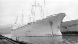 M.S. Hoegh Mallard [at dock]