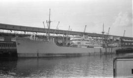 M.S. Panama [at dock]