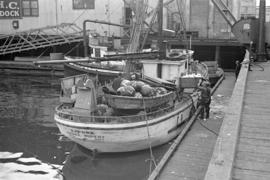 "[Fishing boat ""Zapora"" at fisheries dock]"