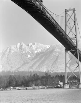 [View of the Lions Gate Bridge taken from beneath the bridge]