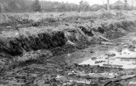 [View of the] Main St. bog [between 33rd Avenue and 41st Avenue]