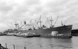 S.S. Topa Topa [at dock, with lumber-filled barges alongside]