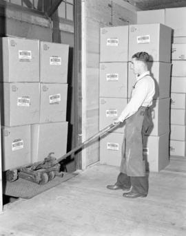 [Man moving boxes of Westminster Paper products]