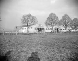 [Quonset steel buildings being constructed on a farm]