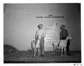 Man and woman with prize-winning goats in Livestock building