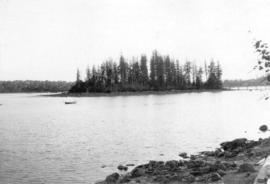 [View of Deadmans Island from Stanley Park]