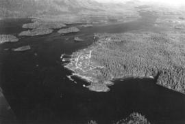 [Aerial view of Tofino]