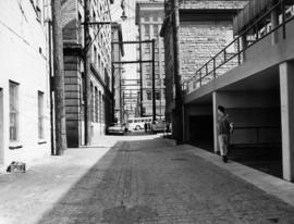 [View of cobblestone alley behind the 400 block Main Street, looking north]