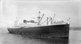 M.S. Pacific Pioneer