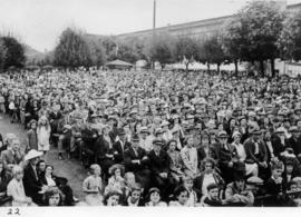 Crowd at outdoor stage performance