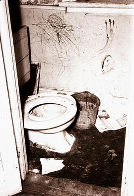 [Interior view of a bathroom and toilet in an abandoned house in Strathcona]