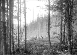 [Girl and boy playing in a clearing in the forest]