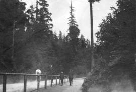 [Pedestrian and equestrian paths in Stanley Park]