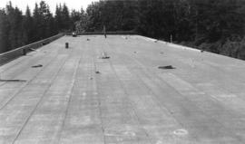 [Job no. 588 : photograph of the roof on the Jubilee Grand Stand at Stanley Park]