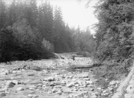 Capilano log jam, lower creek