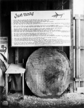 Dendrochronology display
