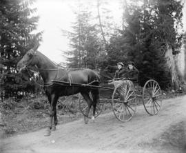 [Cassady sisters in horse drawn carriage in Stanley Park]