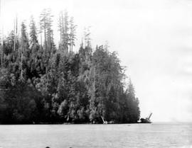 "[Wreck of S.S. ""Beaver"" off Observation Point (now Prospect Point)]"