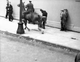 [A mounted police clubs a man during the Powell Street Riot]