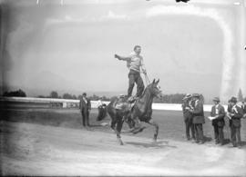 Police sports [stunt horse riding]