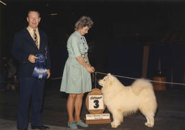 Group three [Working Group: Samoyed] award presented at 1973 P.N.E. All-Breed Dog Show