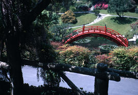 Gardens - United States : Huntington Botanical Garden, Japanese bridge