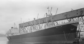 S.S. Batis [at dock]