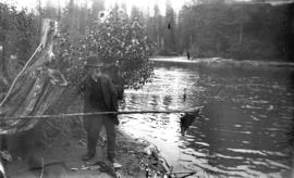 [Man spearing salmon in Seymour Creek]