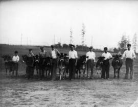 Line of young men with Jersey cattle