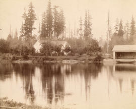 [Seymour Creek milk ranch owned by C.J.P. Phibbs and Fred Thompson]