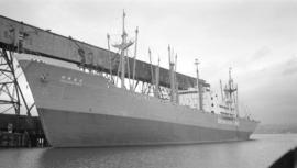 M.S. Iseharu Maru [at dock]