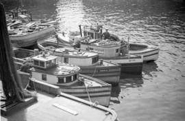 Fish boats [at dock]