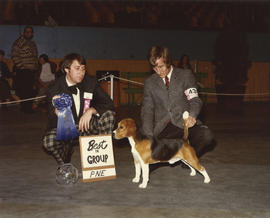 Best in Group [Hound Group: Beagle] award being presented at 1975 P.N.E. All-Breed Dog Show