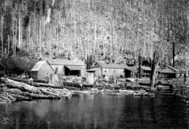 [Logging camp at Lake Coquitlam]