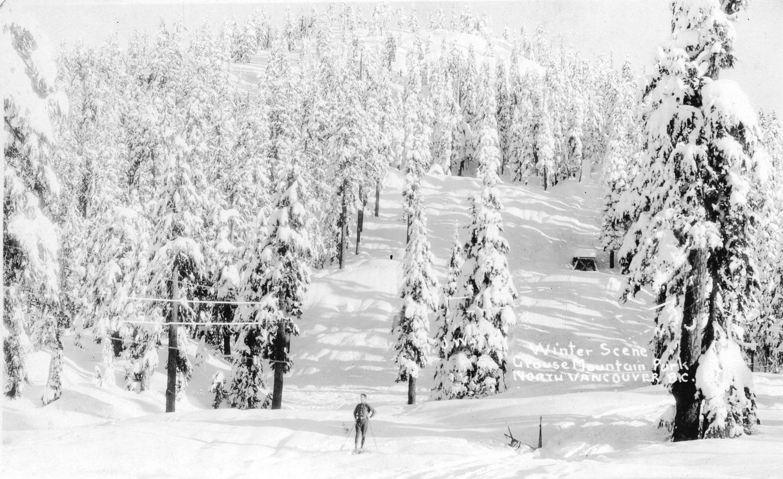 Winter Scene Grouse Mountain Park North Vancouver BC Open Original Digital Object