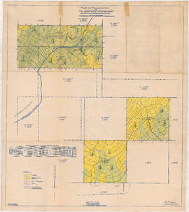 Timber and topographic map of T.L.4290P - 4292P and 4296P - Chapman Creek, New Westminster Distri...