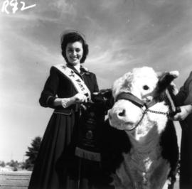 Lynn Adcock, Miss P.N.E., with grand champion Hereford cattle