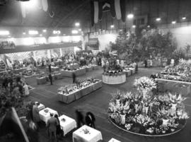 1954 P.N.E. Horticultural Show exhibits in Forum building