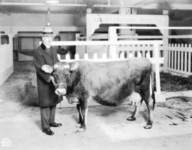 "[Mayor L.D. Taylor with the ""World's Champion Jersey"" cow, possibly at the Canadia..."