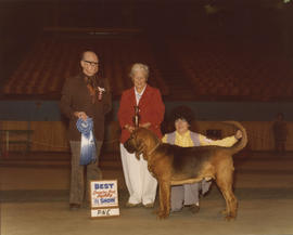 Best Canadian Bred Puppy in Show award being presented at 1976 P.N.E. All-Breed Dog Show [Bloodho...