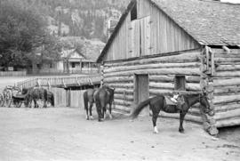 [Horses beside a log building]