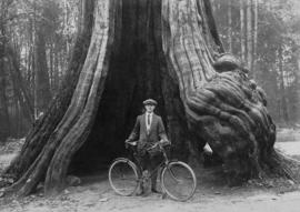 James Bennett Fyer (Ben) [standing with bicycle] by Hollow Tree in Stanley Park
