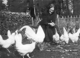Adella Barwis Dorais feeding her hens when eggs were $1.20 per dozen.  At the log cabin