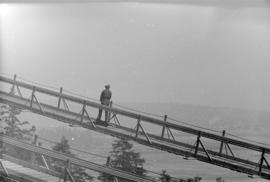 [Worker on catwalk of the Lions Gate Bridge under construction]