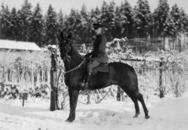 Mounted Policeman in a snow scene