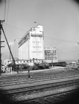 [View of Buckerfield's elevator and United Grain Growers building near] Pacific Terminal