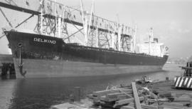 M.S. Delwind [at dock]