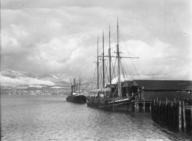 "[Schooner ""Milippine"" loaded with lumber at dock]"